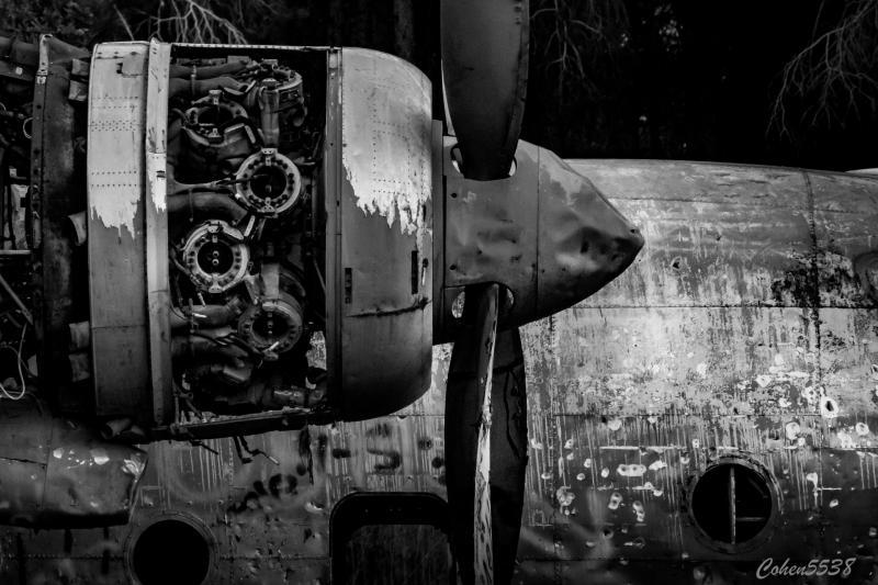 מטוס הנורד ביער המגינים