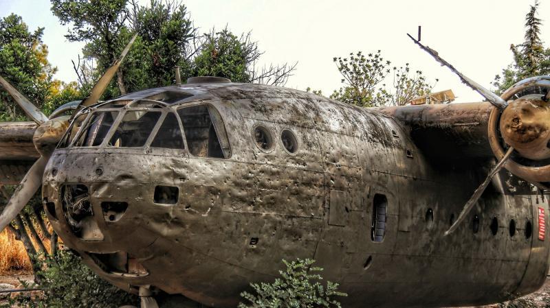 המטוס ביער המגינים