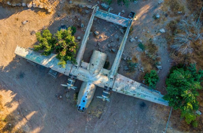 מטוס ביער המגינים