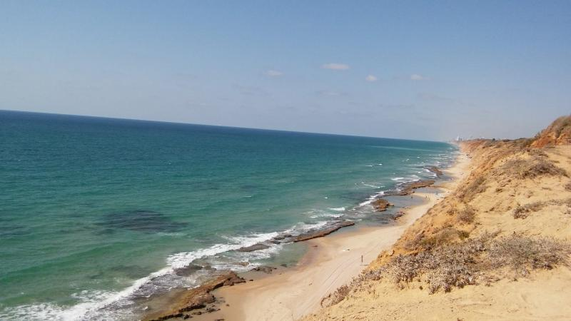 חוף השרון