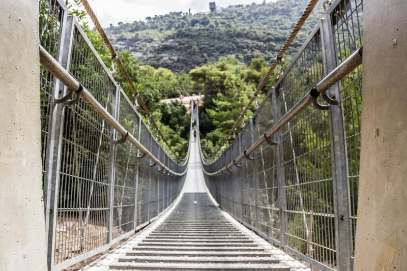 גשרים תלויים בפארק נשר
