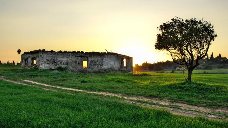 עץ ומבנה נטוש בשדה פתוח
