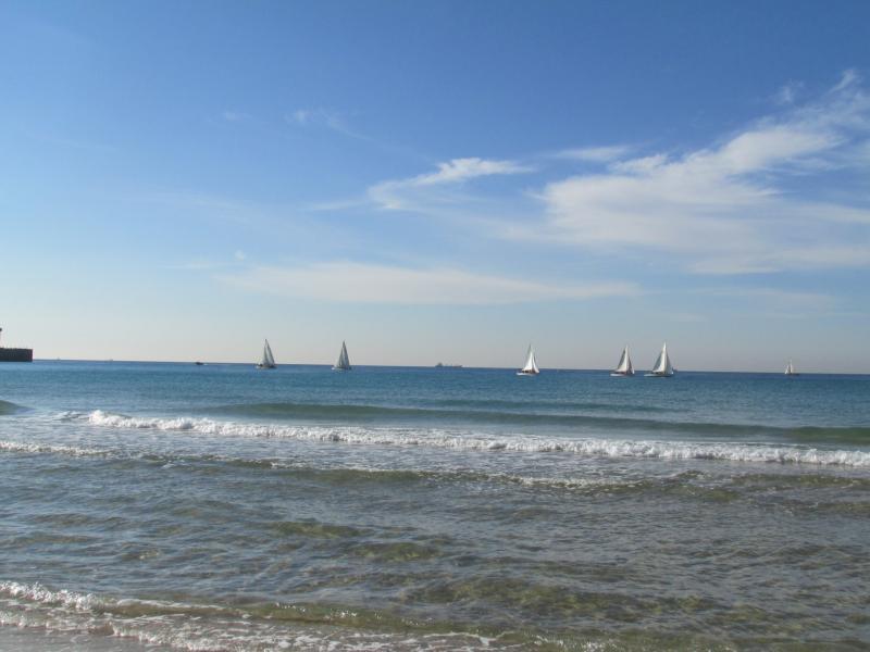חוף עם סירות באופק