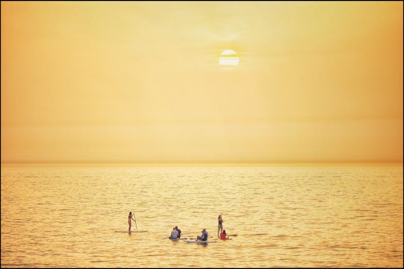 גולשים בחוף