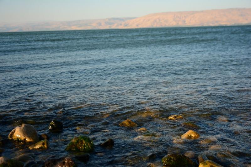 אבנים ומים