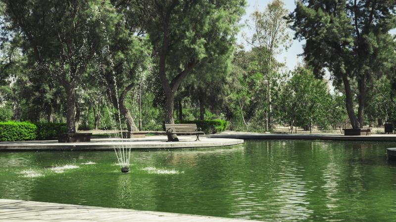 פארק בעומר