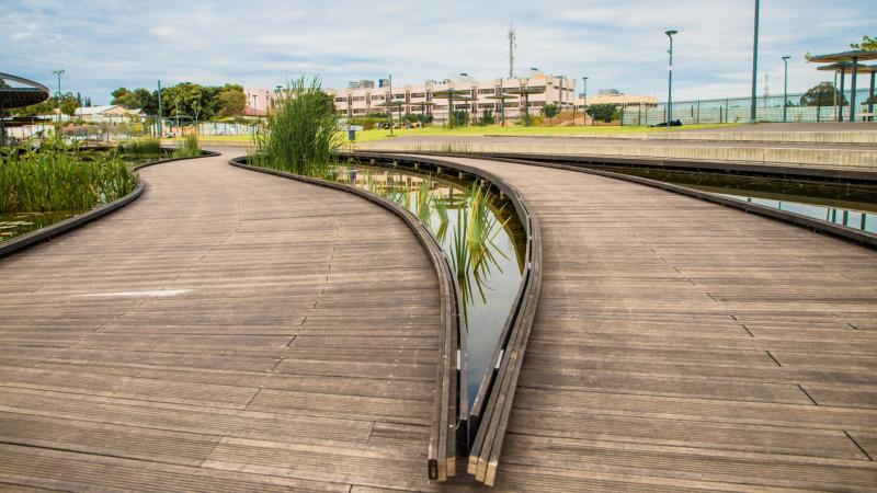 האגם האקולוגי בפתח תקווה