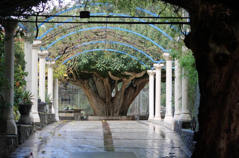 הכנסיה האורתודוכסית כפר נחום